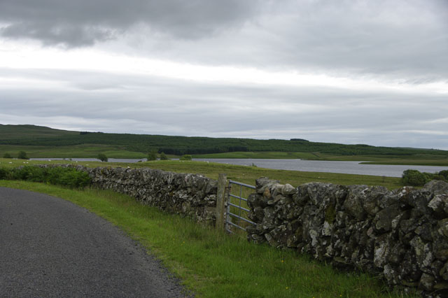Loch Urr – Sheep Wall